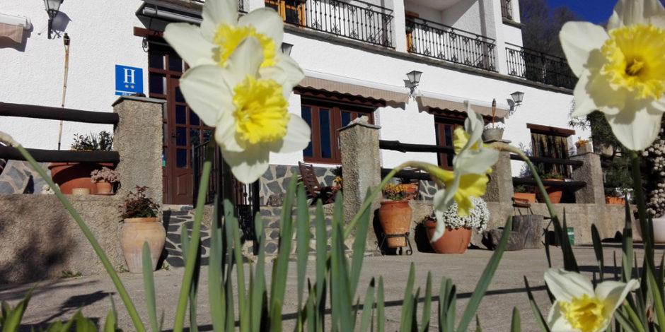 Hotel Rural Los Bérchules