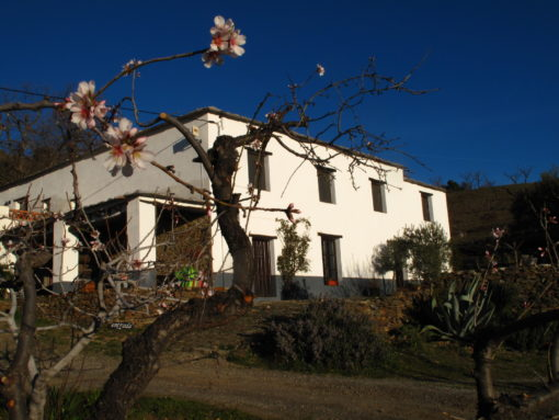 Casas Rurales El Paraje de Bérchules